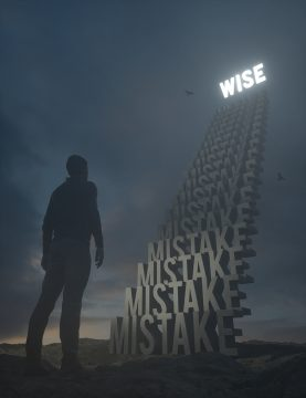 Mistakes to Wise